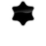 Torx (6 Pointed Star)