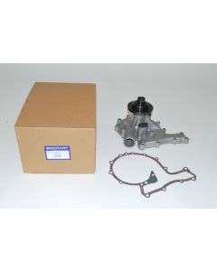 Water Pump and Gasket - V8