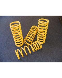 Britpart HD Yellow Coil Springs (pair) - Rear 360lbs/inch